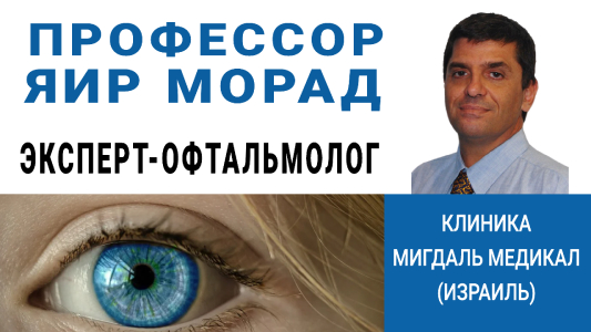 Профессор Яир Морад